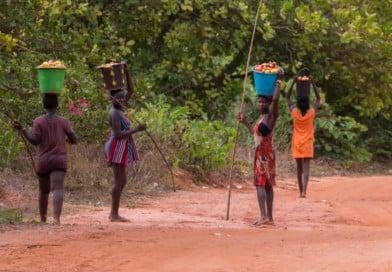 Meisjes met cashew noten, uit het fotoalbum Guinea-Bissau op www.edvervanzijnbed.nl